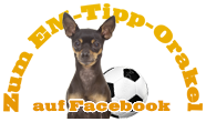 Zum EM-Tipp-Orakel auf Facebook