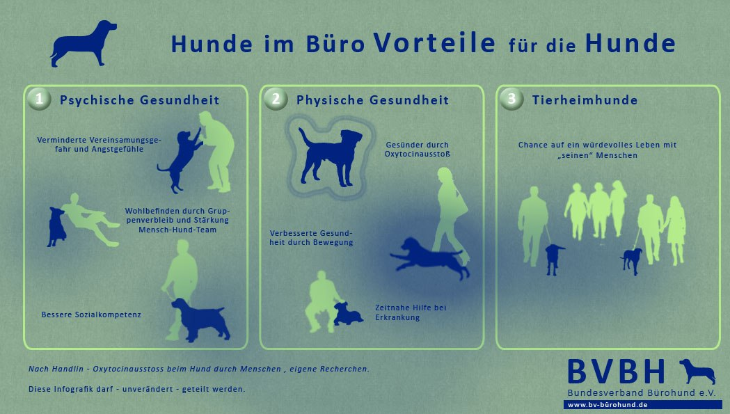 Grafik mit Vorteilen für den Hund